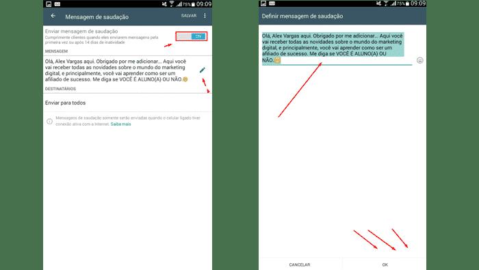 Como cadastrar mensagem de saudação no WhatsApp Business
